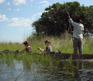 Mekoro ride Okavango Delta